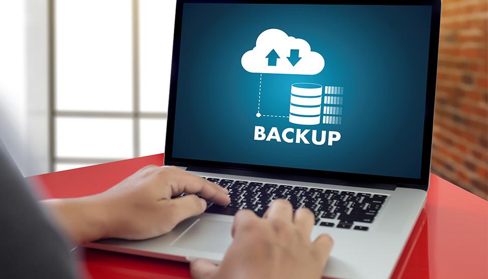 Backup-365